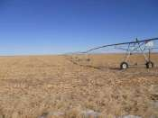 Box Butte Pivots
