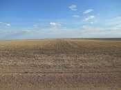 Bushnell Dryland Farm