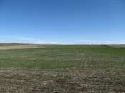 Kimball County Dryland