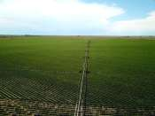 Gardner Farms Parcel 5